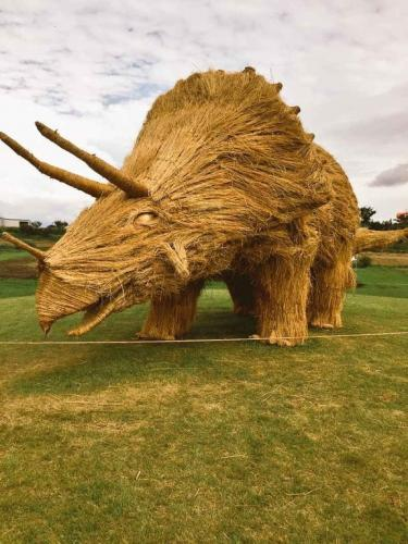 Triceratops made out of straw